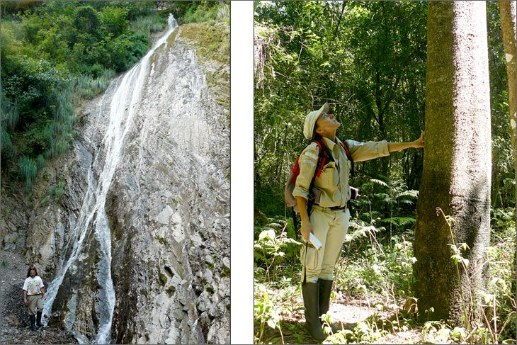 i77_35_salta_mundoenbicicleta_parque_nacional_el_rey_chorro_de_los_loros