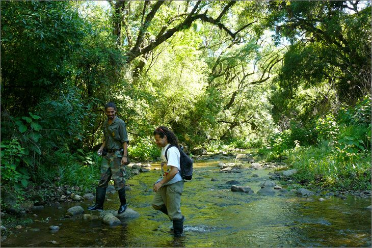i77_57_salta_mundoenbicicleta_parque_nacional_el_rey