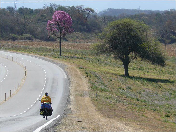 i86_06_metan_ruta_9_salta_viajar_mundo_en_bicicleta
