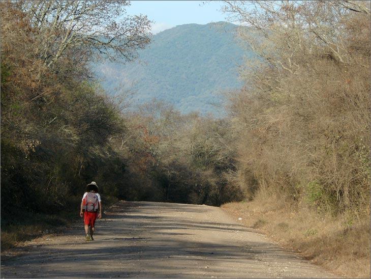 i88_44_ruta_6_jujuy_mundo_en_bicicleta_viajar